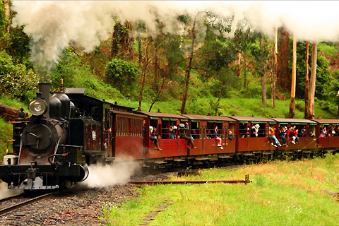 Paket Puffing Billy with Wildlife & Wine Country in Style