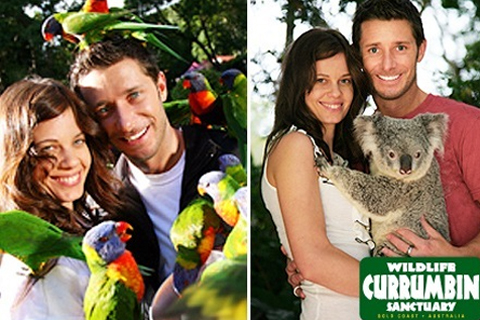 Paket Currumbin Wildlife Sanctuary - Day Pass - General Admission