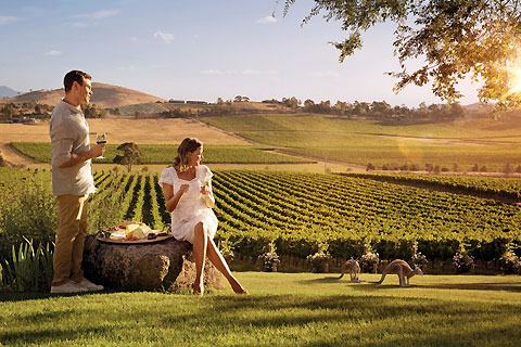 Paket Yarra Valley Wine Country
