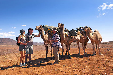 Paket 1 Hour Sunset Camel Ride
