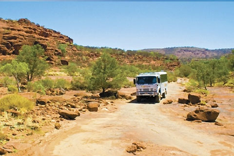 Paket 1 Day Palm Valley 4WD Outback Safari