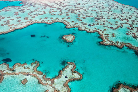 Paket Tour 4D/3N Favourite Hamilton Island with Great Barrier Reef Adventure