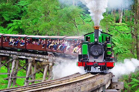 Paket Tour 5D/4N Favourite Melbourne Experience Great Ocean Road, Puffing Billy & Healesville Wildlife