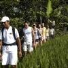 Maya Ubud Activities 2