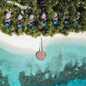 Wonderful Beach Oasis - Aerial