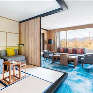 Suite - Mountain View